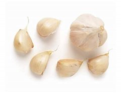 Picardy Wight Garlic