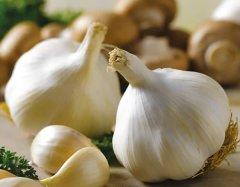 Solent Wight Garlic