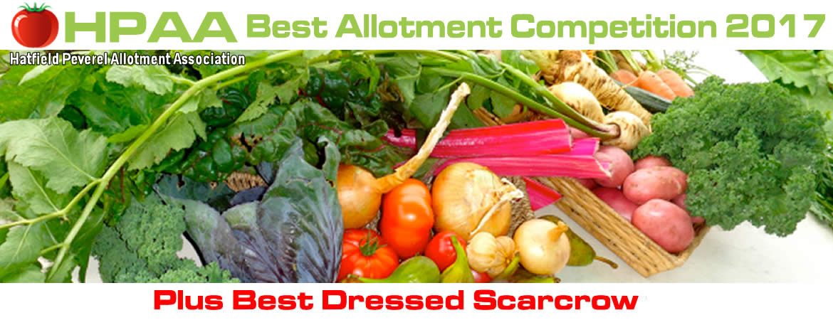 Best Allotment Competition 2017