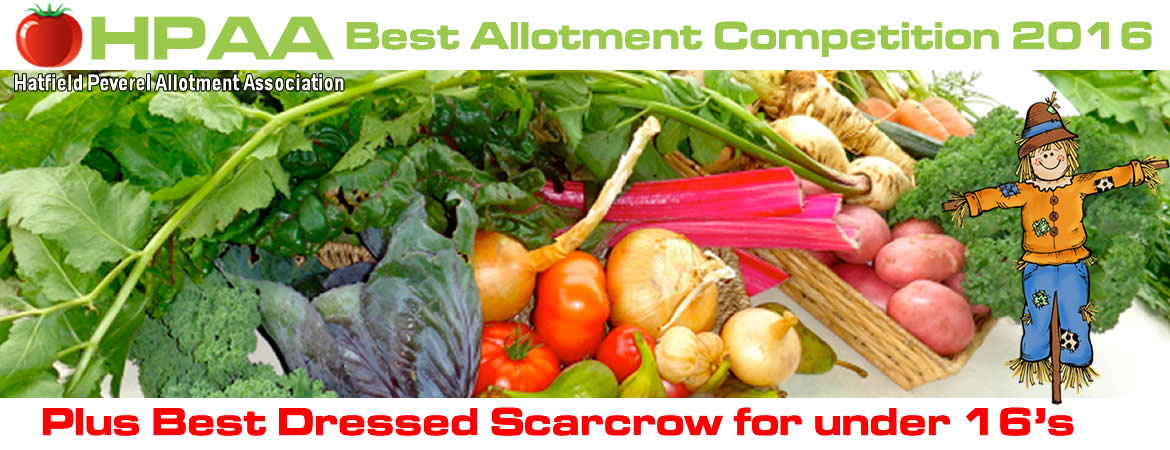 Best Allotment Competition 2016