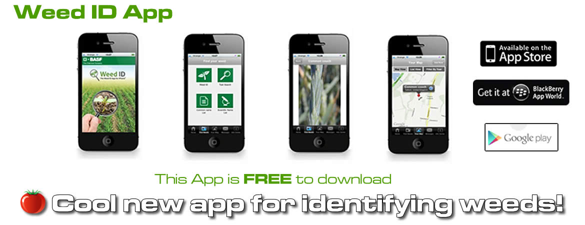 New Weed Identification App