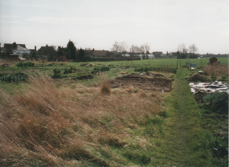 The Old Site